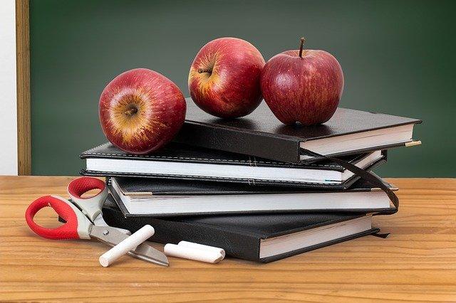 Harmonogram pracy pedagoga szkolnego